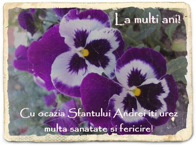 http://www.universdecopil.ro/images/stories//adolescenti/timp_liber/andrei_felicitari/felicitari%20sfantul%20andrei.JPG