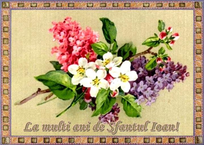 http://www.universdecopil.ro/images/stories//adolescenti/timp_liber/felicitari_sfantul_ioan/sfantul_ioan_felicitare.jpeg