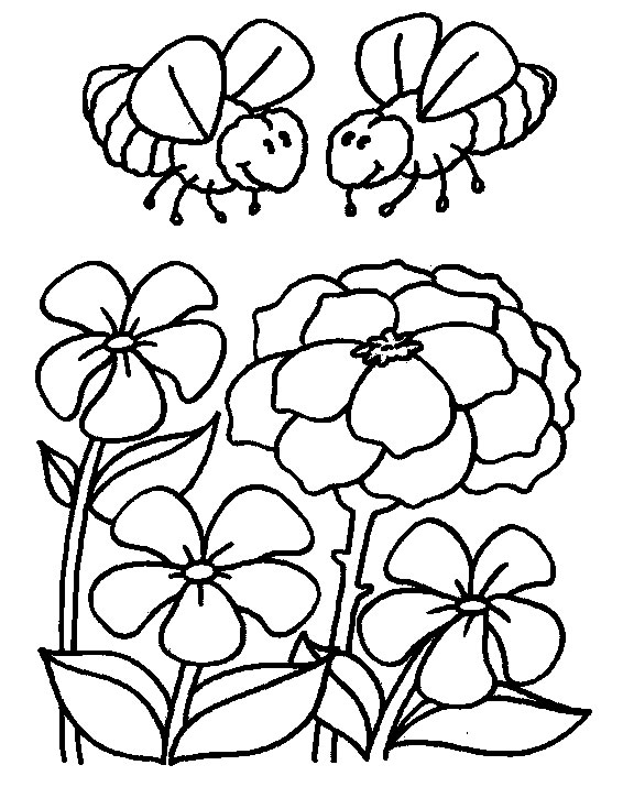 Flori Planse De Colorat Planse De Colorat