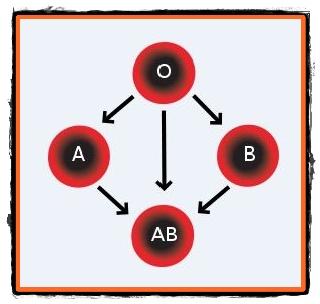 compatibilitate grupe de sange parinti