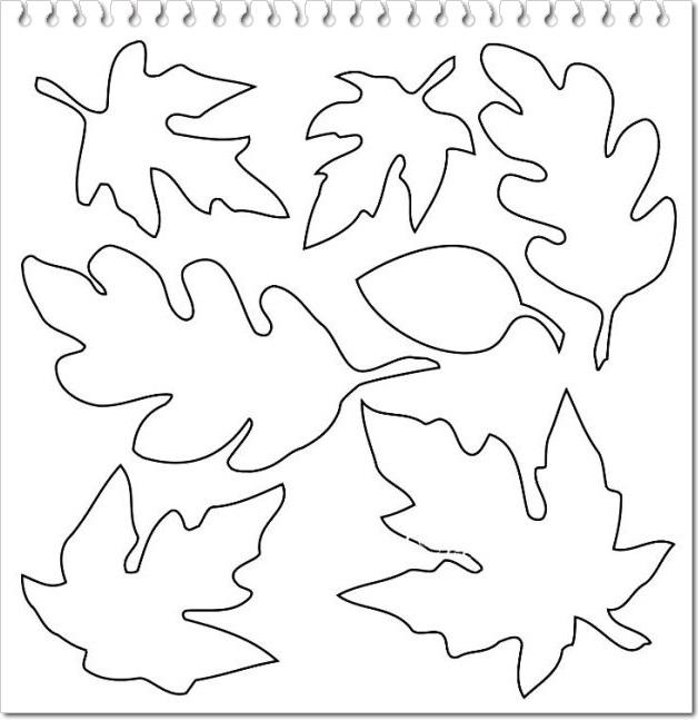 Planse De Colorat Cu Frunze De Toamna Planse De Colorat