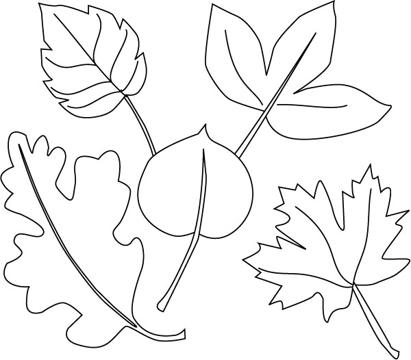 Frunze planse de colorat planse de colorat for Leaf coloring pages